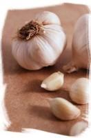 Plants to treat hypertension